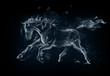 canvas print picture - Horse