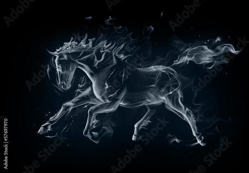 canvas print picture Horse