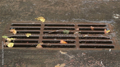 city drain in autumn