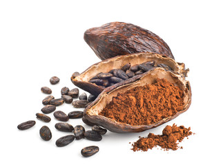 Cocoa pod, beans and powder isolated on a white