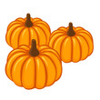Pumpkin isolated illustration