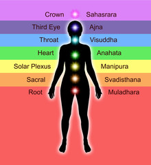Diagram showing Seven Chakras and Colours