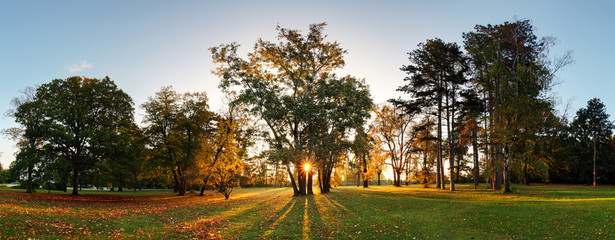 Autumn park - panorama with sun