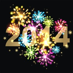 Neujahrsparty 2014