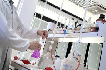 chemical laboratory, technician making a test