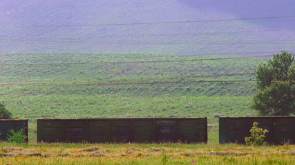 Freight train moving along the countryside