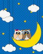 Love card. Owls couple on the moon watching the stars