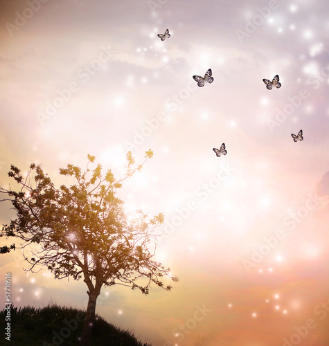 Poster Heuvel Tree silhouette with butterflies in twilight