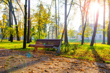 Park bench during autumn