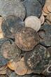 Stare monety numizmatyka