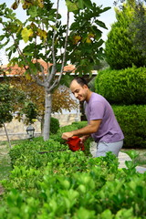man pruning shrub with tool in garden