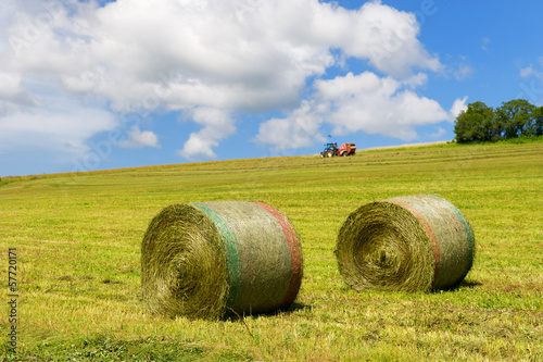 Harvest of rolls hay