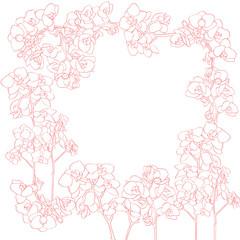 orchids frame