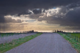 Rural road is leading to spectacular cloudscape