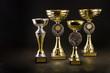 Trophy cup - 57721954