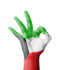 Hand making Ok sign, Kuwait flag painted