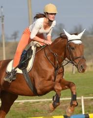 équitation