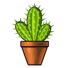 cactus isolated illustration