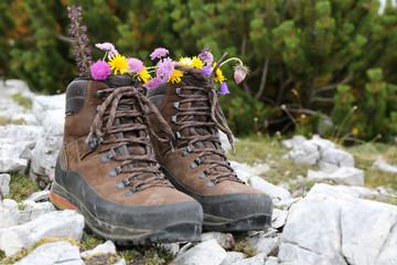 Wanderschuhe mit Blumen in den Bergen