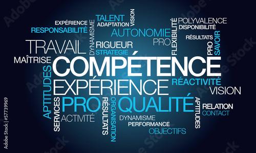 Compétence expérience professionnelle emploi nuage de mots