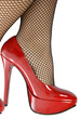 The sensual legs in fishnet stockings