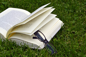 Glasses and book on the grass