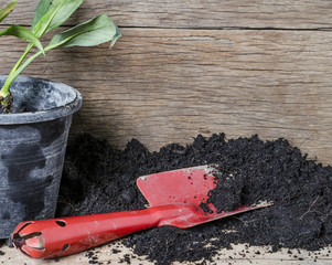 Plant tool with soil and wooden blackground