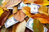 Scattered Dollar Bills Amongst Fallen Autumn Leaves