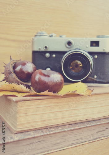 Vintage old camera and fresh  chestnut