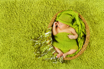 Baby newborn sleeping in woolen hat over green carpet