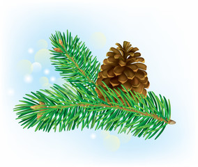 Branch of spruce with pine cone