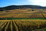 Colline et Vignoble de France