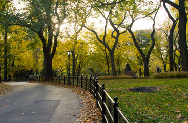 Cetral Park in Fall - New York City