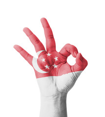 Hand making Ok sign, Singapore flag painted