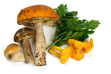 mushroom and parsley leaves