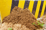 Anthill Termites build shelter close to the concrete
