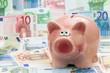 Sparschwein mit Euroscheine