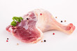 isolated duck leg