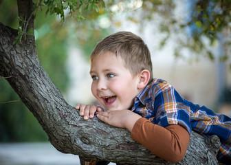 Jeune garçon jouant dans un arbre