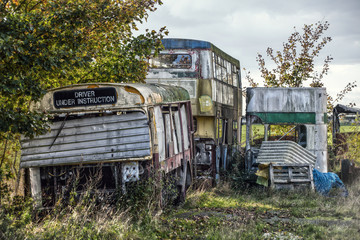 derelict buses