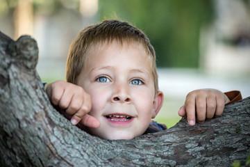 Portrait d'un petit garçon dans un arbre #2