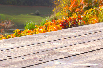 Holztisch vor buntem Weinlaub