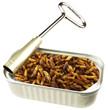 larves de guêpes frites en conserve