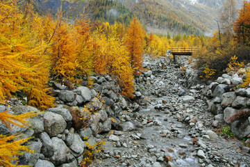 Mountain stream and autumn colors