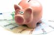 rosa Sparschwein auf Euroscheine