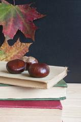 Back to school, old books, black board, autumn.