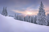 Beautiful winter landscape in the mountains. Sunset
