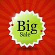 Big sale icon - green label on red background, vector