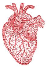 Czerwone serce człowieka z geometryczny wzór siatki, wektor