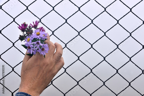 wire fence holding hands and background